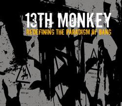 13thmonkeyredefining250